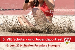 VfB Sportfest Logo 2014 mini1