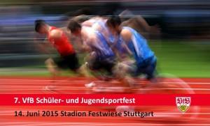 Sportfest Logo 2015